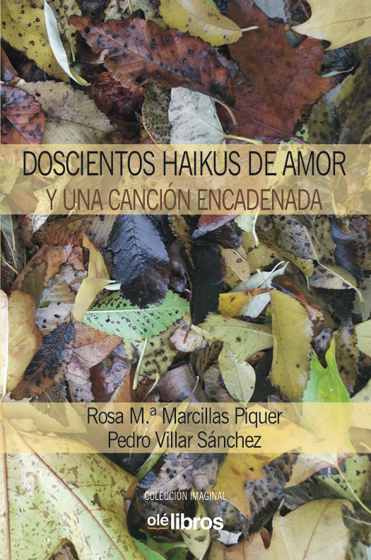 doscientos_haikus_pedro_villar_ole_libros