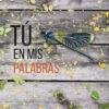 tu_en_mis_palabras_ole_libros_idoia_mielgo