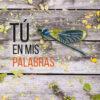 idoia_mielgo_tu_en_mis_palabras_olé_libros